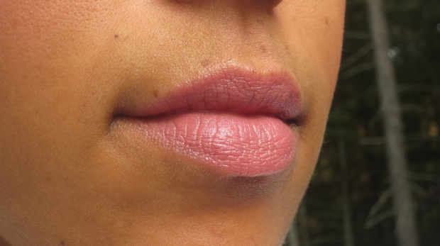 Kat Von D Lovecraft lipstick lip swatch