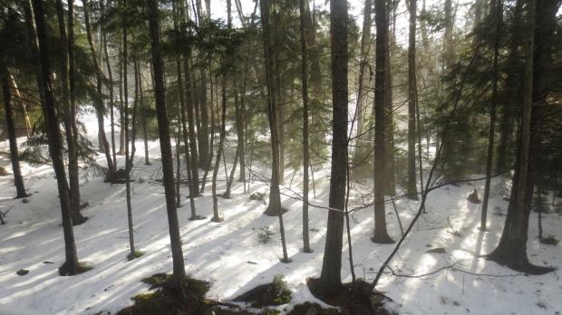 March 2014 Bedford, Nova Scotia